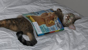 When Does the Sports Illustrated Swimsuit Issue Come Out?