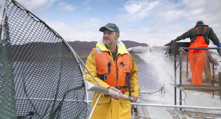 start-fish-farming