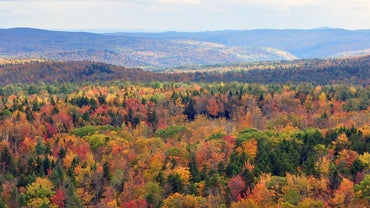 What States Border Vermont?