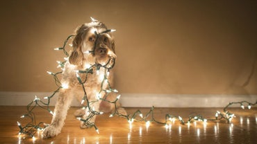 How Do You Make Christmas Lights Twinkle?