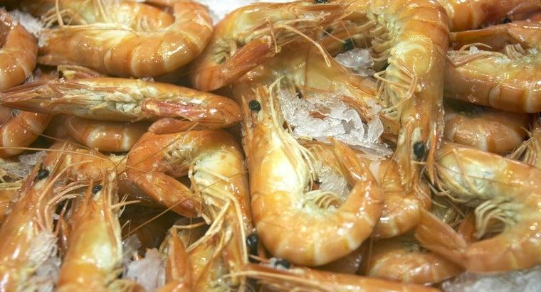 symptoms-shellfish-allergy
