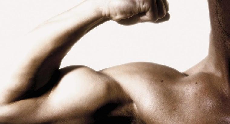 symptoms-torn-bicep-muscle