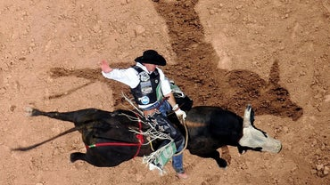 How Tall Is the Average PBR Bull Rider?