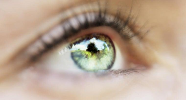 regulates-amount-light-entering-eye