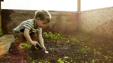 What Are Three Methods of Soil Conservation?