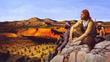 What Is the Timeline for Alvar Nunez Cabeza De Vaca's Life?