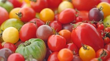 Is a Tomato a Citrus Fruit?