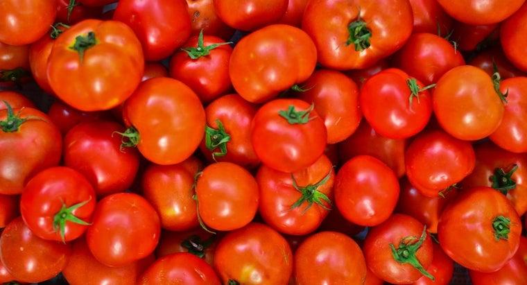 tomatoes-season