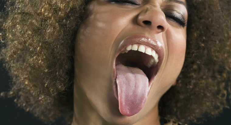 tongue-tissue-organ-organ-system