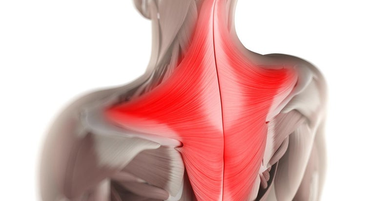treatments-pulled-trapezius-muscle