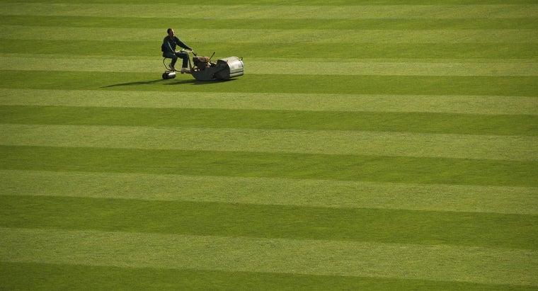 type-oil-goes-lawnmower