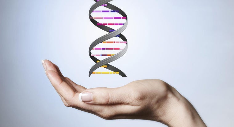 up-backbone-dna-molecule