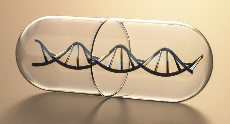 up-sides-ladder-dna-molecule