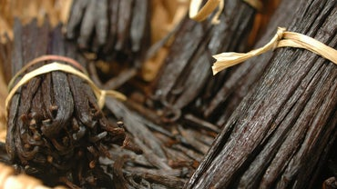 Is Vanilla Essence the Same As Vanilla Extract?