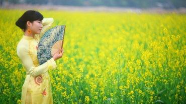 What Do Vietnamese People Wear?