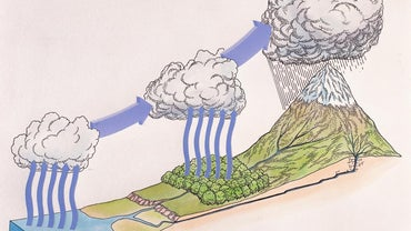 Why Is the Water Cycle Important?