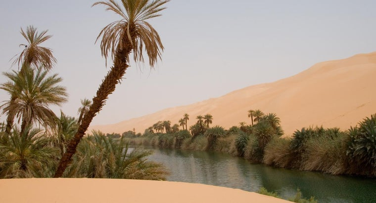 water-re-stranded-desert
