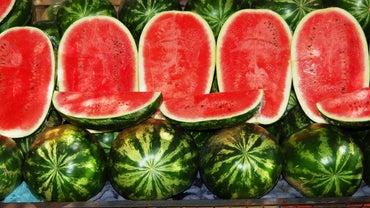 When Is Watermelon in Season?