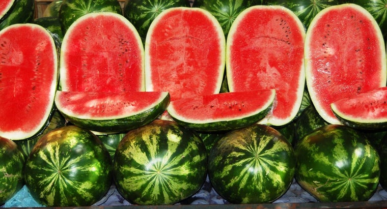 watermelon-season