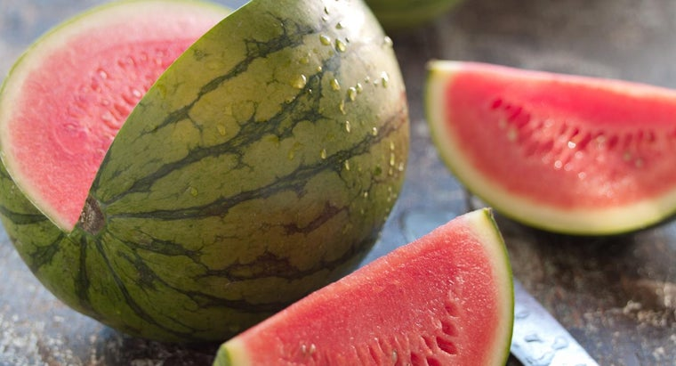watermelon-vine-look-like