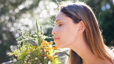 What Are Possible Causes of a Heightened Sense of Smell?