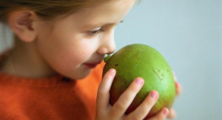 guava-taste-like