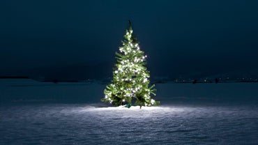What Does the Christmas Tree Symbolize?
