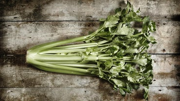 What Is a Head of Celery?