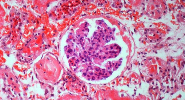 causes-capillaries-dilate