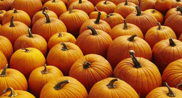 should-plant-pumpkins-missouri