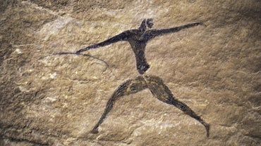 What Was the First Human Race on Earth?