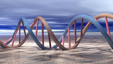Why Does DNA Need to Replicate?