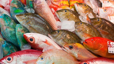 What Is the Most Widely Eaten Fish in the World?