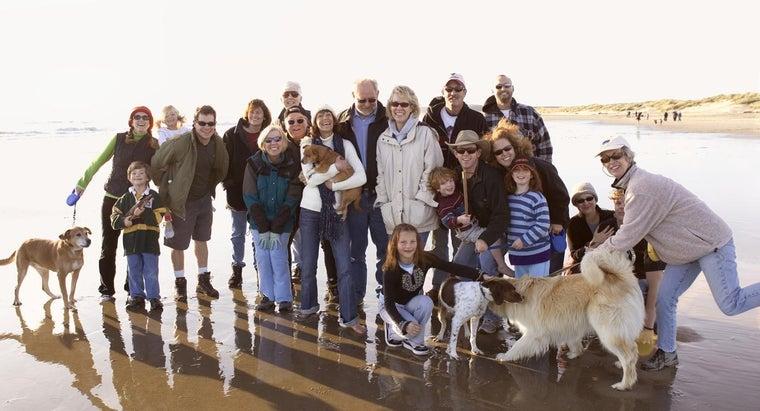 word-family-reunion-invitation