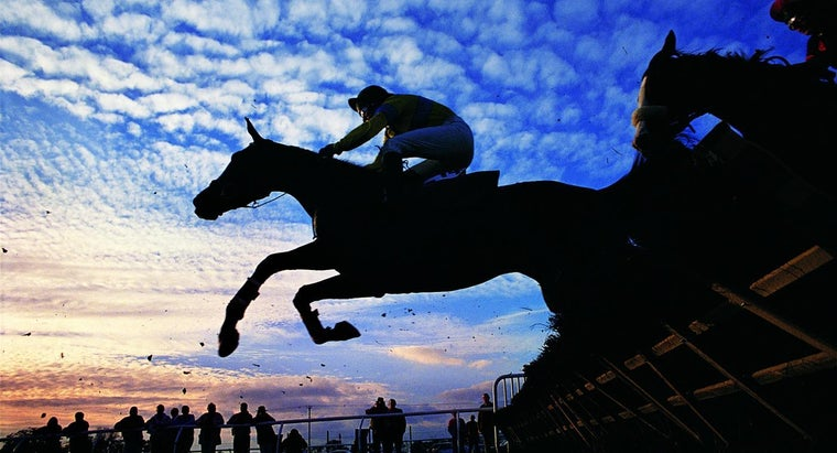 How Do Your Read Daily Racing Form Entries?