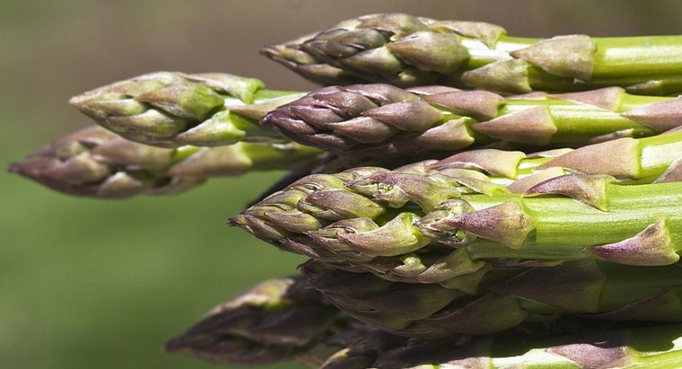 What Is an Easy Asparagus Casserole Recipe?