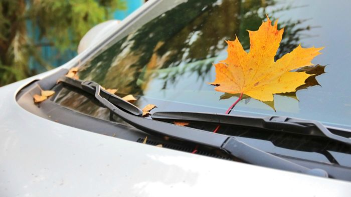 How Do You Find the Right Size of Windshield Wipers for Your Car?