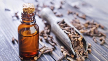 Does Clove Oil Really Work for Severe Toothache Relief?