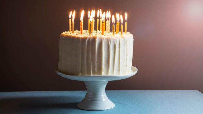 Where Can You View Photographs of Birthday Cakes?