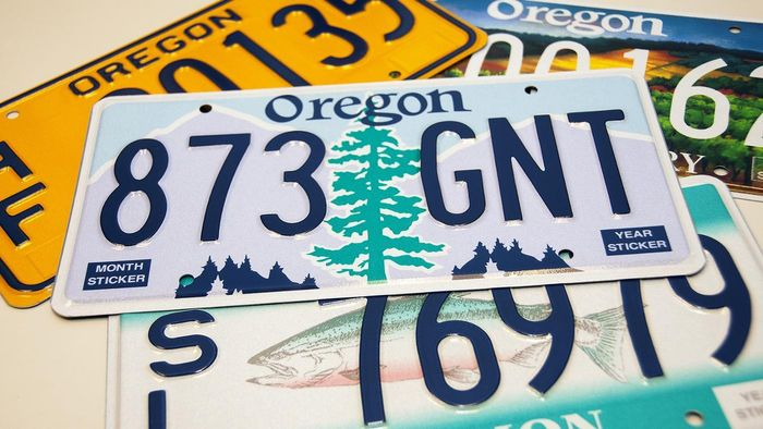 What do you need to renew your license plate at the DMV?