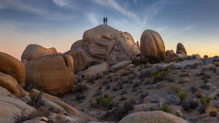 Who Publishes Maps of Joshua Tree National Park?