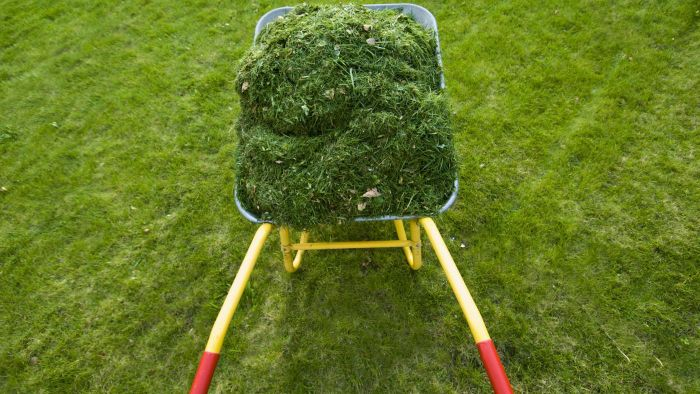 How Do You Dispose of Yard Waste Properly?