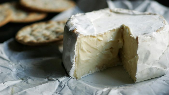 What Are Some Soft Cheeses?