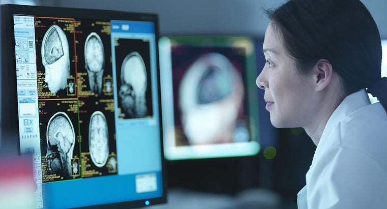 What Are the Most Common Brain Diseases?