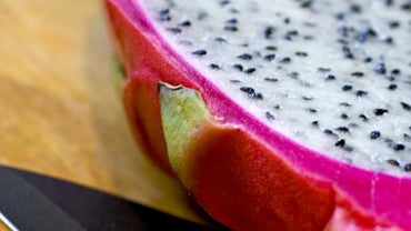 When Is the Best Season to Grow Dragon Fruit?