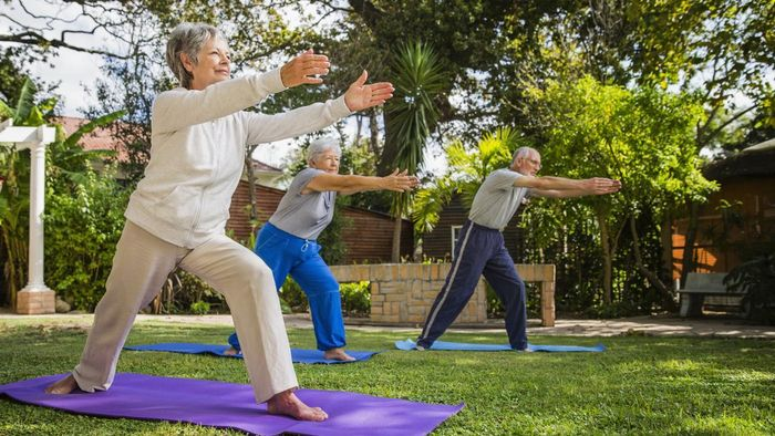 How Do You Plan a Fitness Program for Seniors?