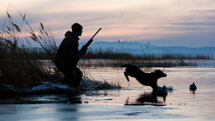 What Are Some Characteristics of Good Layout Boats for Hunting Waterfowl?