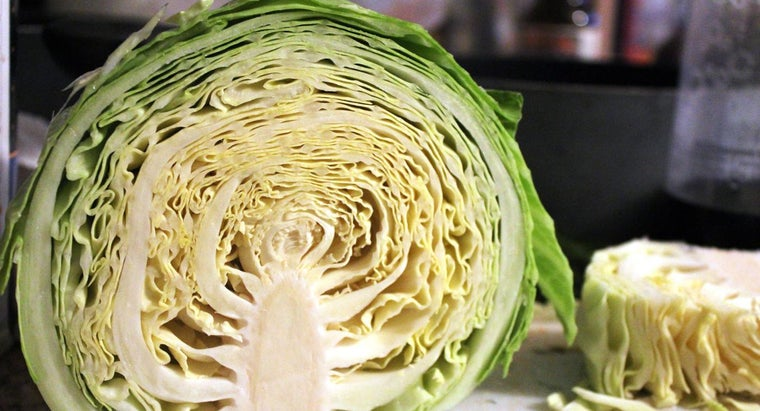 Where Can You Find Easy Recipes for Boiled Cabbage?