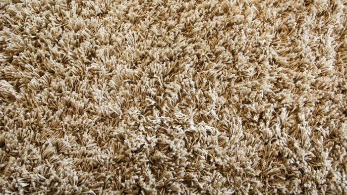 What Does the Process of Carpet Dyeing Entail?