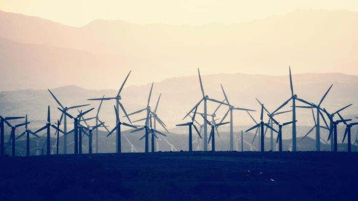 What Training Is Required for You to Become a Wind Turbine Technician?